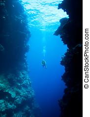 Diver swimming between underwater cliffs - a female scuba...
