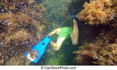 Diver under water swims around rocks - The diver floats in...