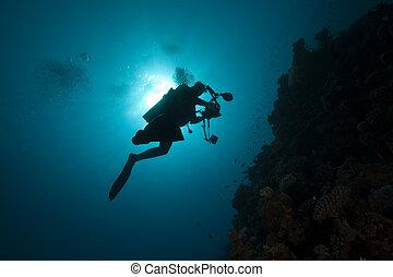 diver - underwater photographer- silhouet
