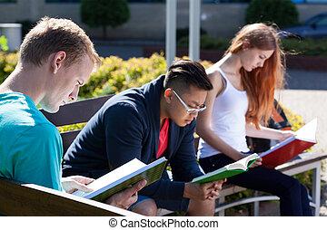 divers, étudiants, sur, a, banc