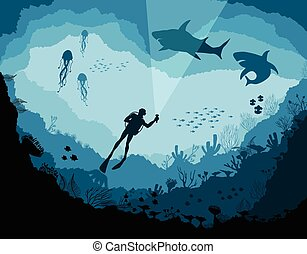 Divers and sharks, reef Underwater wildlife, jellyfish, fish...