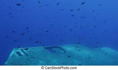 Divers exploring Zenobia shipwreck near Paphos Cyprus