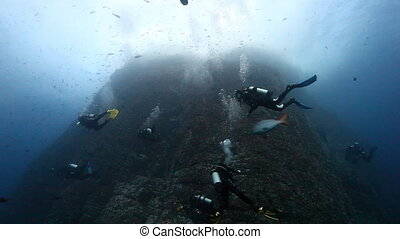 Divers near drop off reef mountain underwater in Pacific...