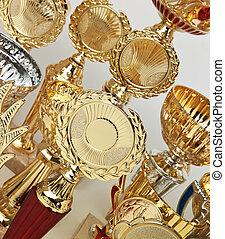 divers, sports, récompenses
