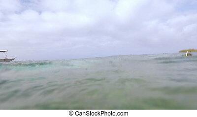 Divers Swimming, GBR, Lady Elliot Island