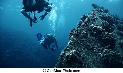 Divers visiting the wreck Giannis D, Red Sea, Sharm el ...