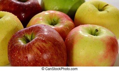 diverse apples close up