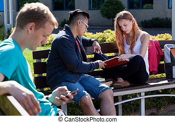 Diverse students studying