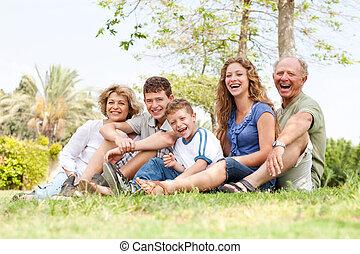 diversión, cariñoso, teniendo, familia , aire libre