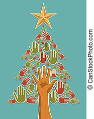 diversité, arbre, noël, mains