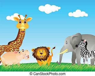 divertente, animale, collezione