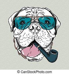 divertente, bullmastiff, cane, vettore, hipster, cartone animato