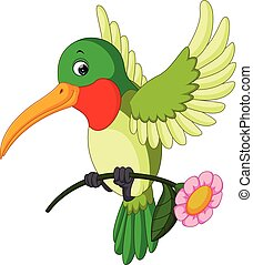 divertente, cartone animato, colibrì