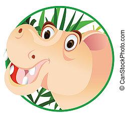 divertente, cartone animato, ippopotamo