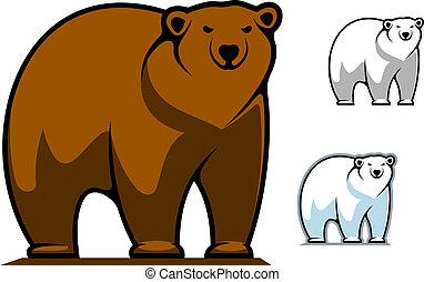 divertente, cartone animato, orso, mascotte