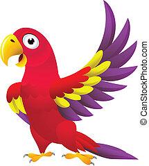 divertente, cartone animato, pappagallo