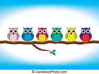 divertente, fila, colorito, gufi