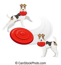 divertente, frisbee, volpe, cane, denti, terrier, rosso