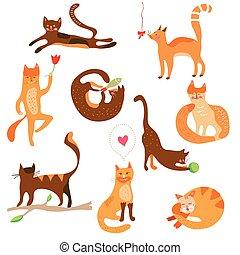 divertente, gatti, set, cartoni animati