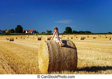 divertente, poco, estate, campo, proposta, carino, mucchio...