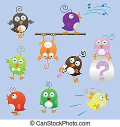 divertente, set, uccelli, grasso