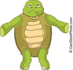 divertente, turtle., confusion.
