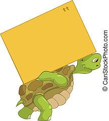 divertente, turtle., delivery.