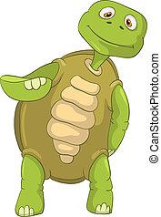 divertente, turtle.