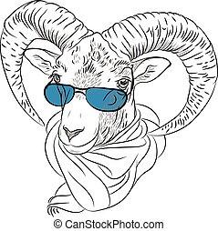 divertente, vettore, closeup, ibex, ritratto, alpino