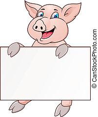 divertido, blanco, cerdo, caricatura, señal