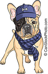 divertido, bulldog, casta, perro, francés, vector, hipster, caricatura