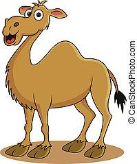 divertido, camello, caricatura