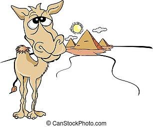 divertido, camello, ilustración, marrón