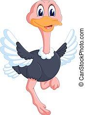 divertido, caricatura, avestruz