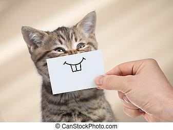 divertido, cartón, sonrisa, gato