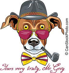 divertido, casta, galgo, perro, vector, hipster, caricatura