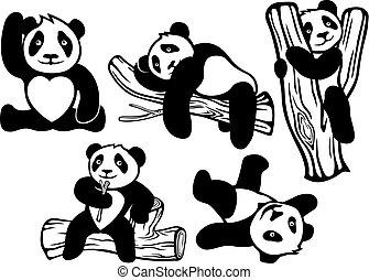 divertido, conjunto, caricatura, pandas