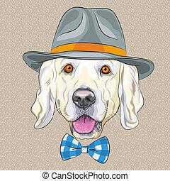 divertido, dorado, perro, vector, hipster, caricatura, perro cobrador