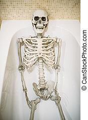 divertido, esqueleto humano, acostado, en, baño, sin, agua