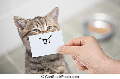 divertido, gato, con, sonrisa, en, cartón, sentado, cerca, alimento