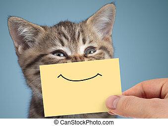 divertido, gato, primer plano, sonrisa, retrato, cartón, feliz