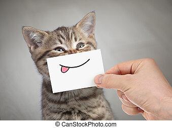 divertido, gato, sonriente, con, lengua