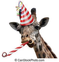 divertido, jirafa, animal, fiesta