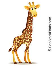 divertido, jirafa, caricatura