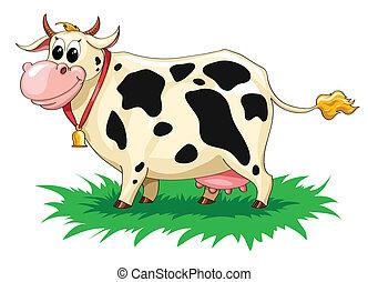 divertido, manchado, vaca