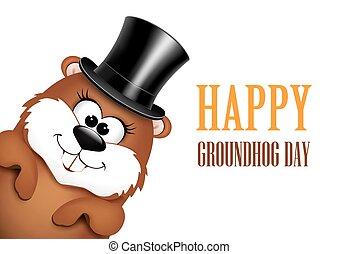 divertido, marmota, sombrero, fondo blanco