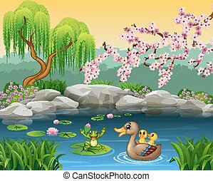 divertido, pato, caricatura, rana, madre