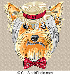 divertido, perro, yorkshire, vector, hipster, terrier, caricatura