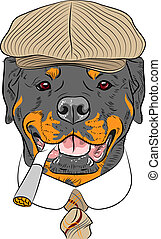 divertido, rottweiler, perro, vector, hipster, caricatura