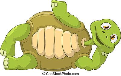 divertido, turtle., lie.